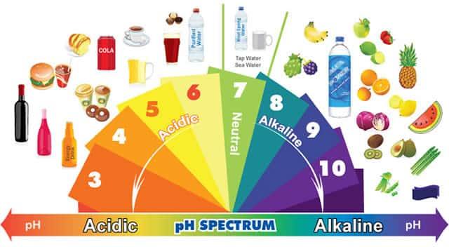 Cibi alcalini e cibi acidificanti lista