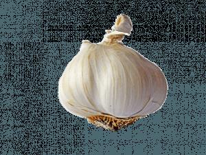 depurare l' organismo con aglio
