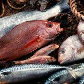 intossicazione da pesce