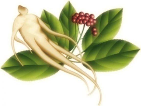 prodotti naturali per rinforzare il sistema immunitario 1