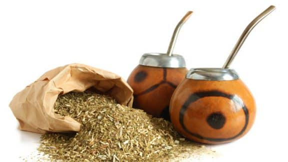 yerba mate cancro