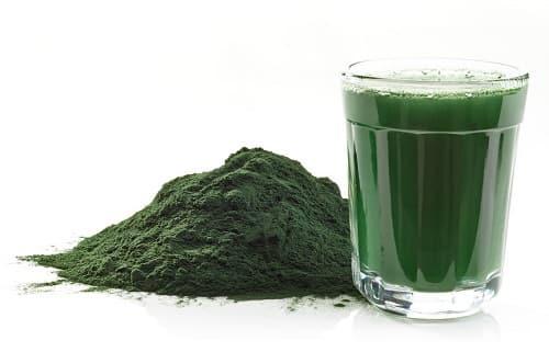 Alga clorella dose giornaliera