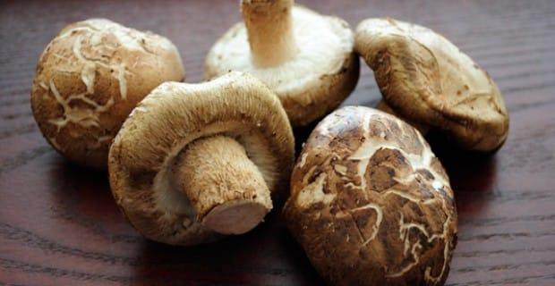 Funghi Shiitake: Ricette, proprietà e info sull'acquisto