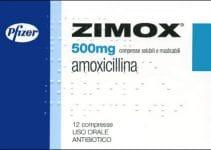 Zimox antibiotico amoxicillina
