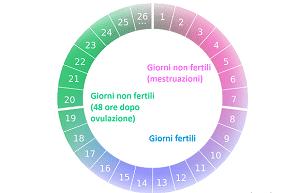 Il calcolo del periodo fertile è un aspetto fondamentale per la vita di una donna, sia per la gravidanza, sia per scongiurare figli non desiderati.