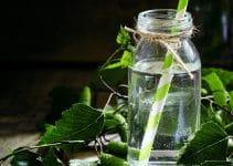linfa di betulla proprietà benefici e dove si compra