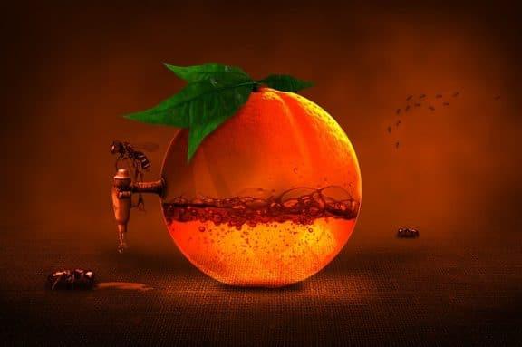 Vitamina C naturale integratori