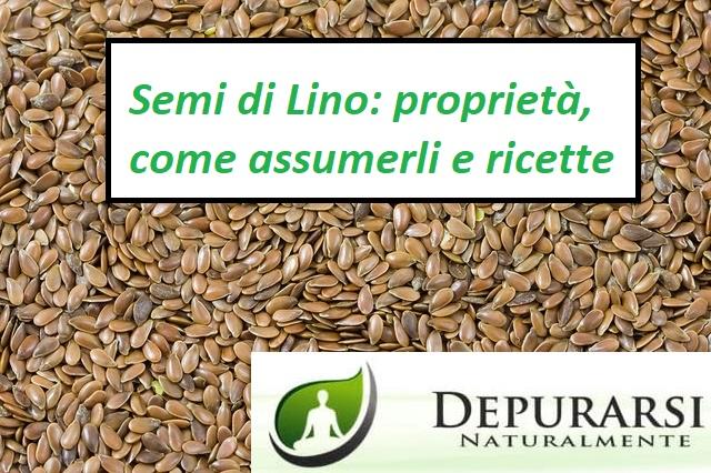 semi di lino proprietà e controindicazioni